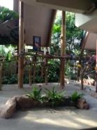 Bird park 2